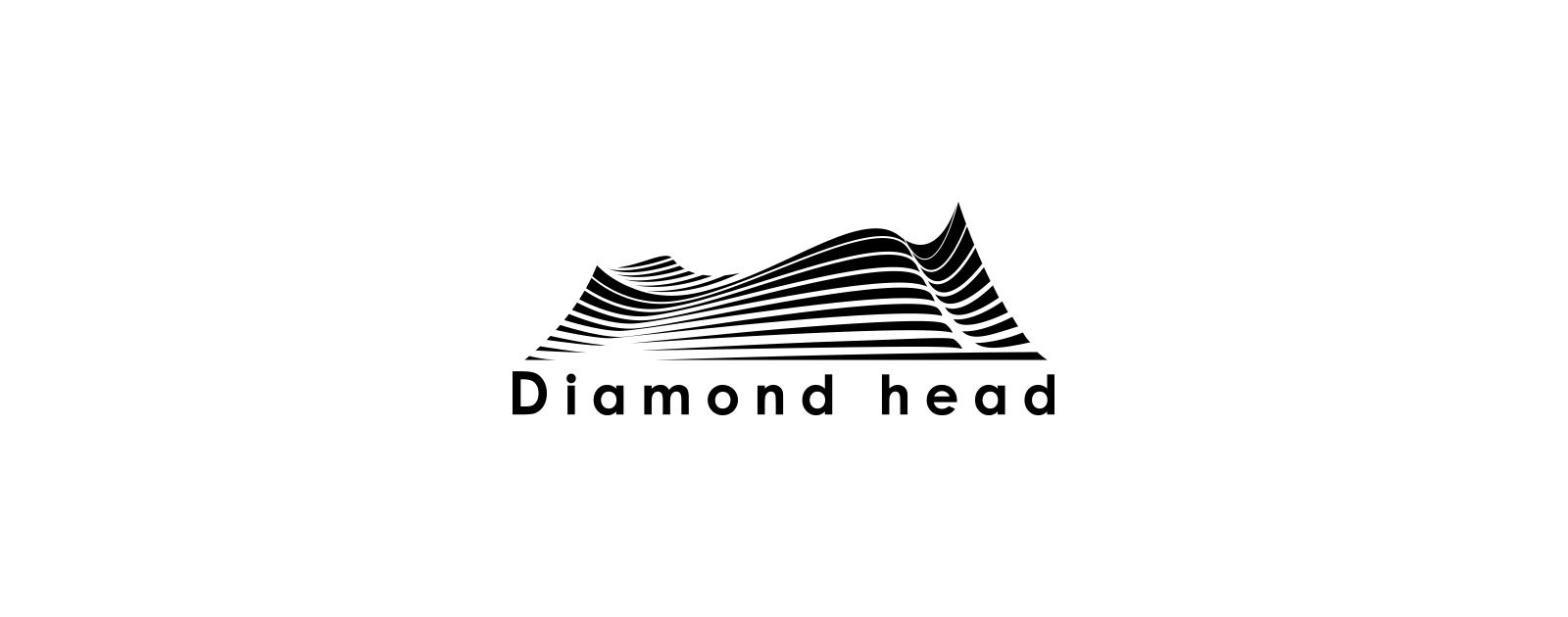 株式 ダイアモンド 会社 ヘッド